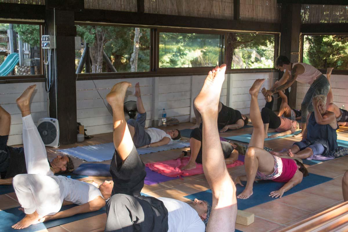 połączyć się z nauczycielem jogi